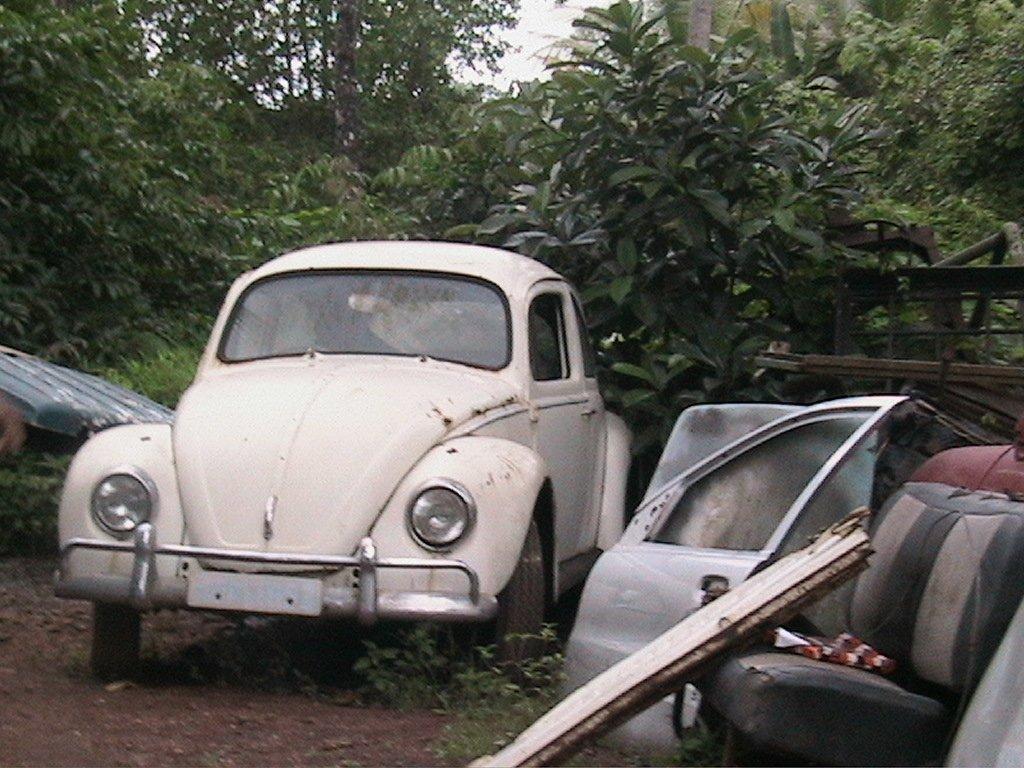 Junk Cars Virginia-Highland
